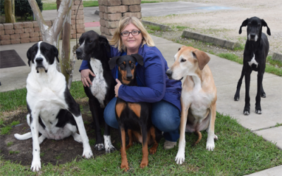 veterinarian with her five dogs